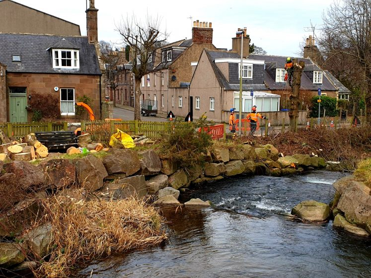 Tree surgeons at work on junction of Carron Terrace and Arduthie terrace, Carron River in foreground