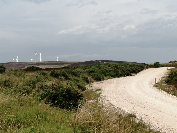 windfarm with access track