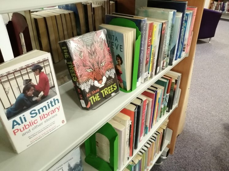 Row of books on library shelf